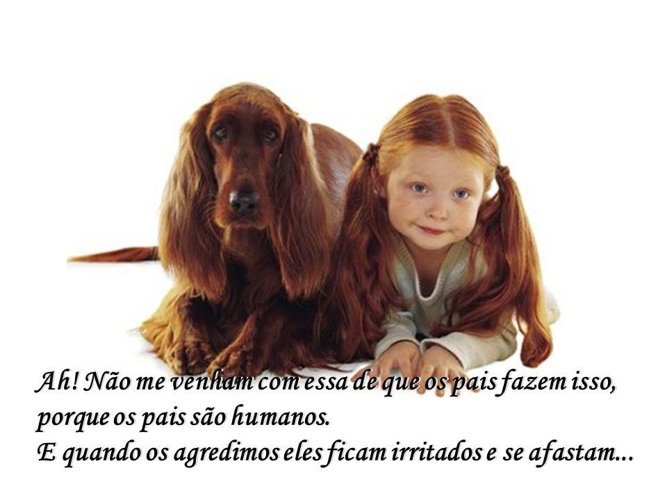 Além do olhar e da lambida de um cão... Além do olhar e da lambida de um cão...