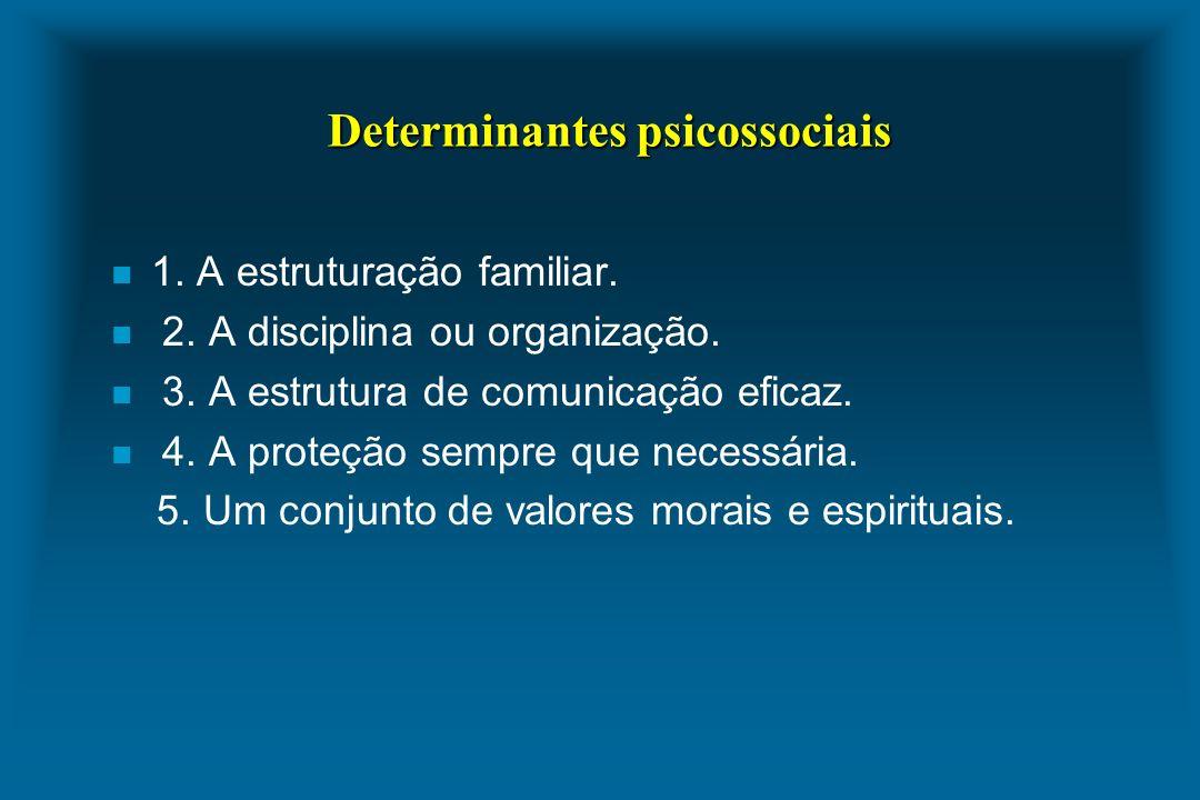 Determinantes psicossociais n 1. A estruturação familiar. n 2. A disciplina ou organização. n 3. A estrutura de comunicação eficaz. n 4. A proteção se