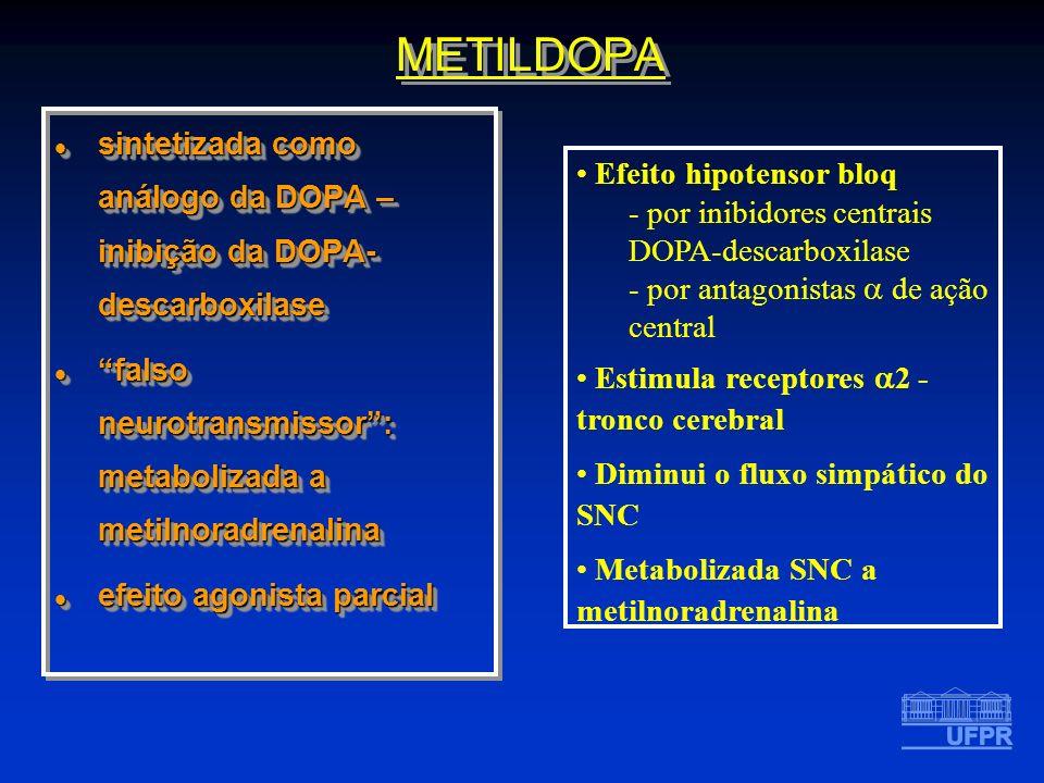 METILDOPA sintetizada como análogo da DOPA – inibição da DOPA- descarboxilase sintetizada como análogo da DOPA – inibição da DOPA- descarboxilase fals