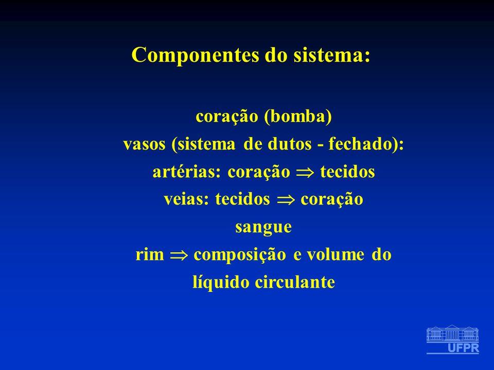 MECANISMO HUMORAL / LOCAL - SRA fígado Angiotensinogênio Cininogênio rim Renina Calicreína pâncreas Angiotensina I Bradicinina PGs pulmão ECA Inibidores Cininase da ECA Angiotensina II Produtos Inativos vasoconstr adrenal aldosterona rim retenção NaCl/H2O