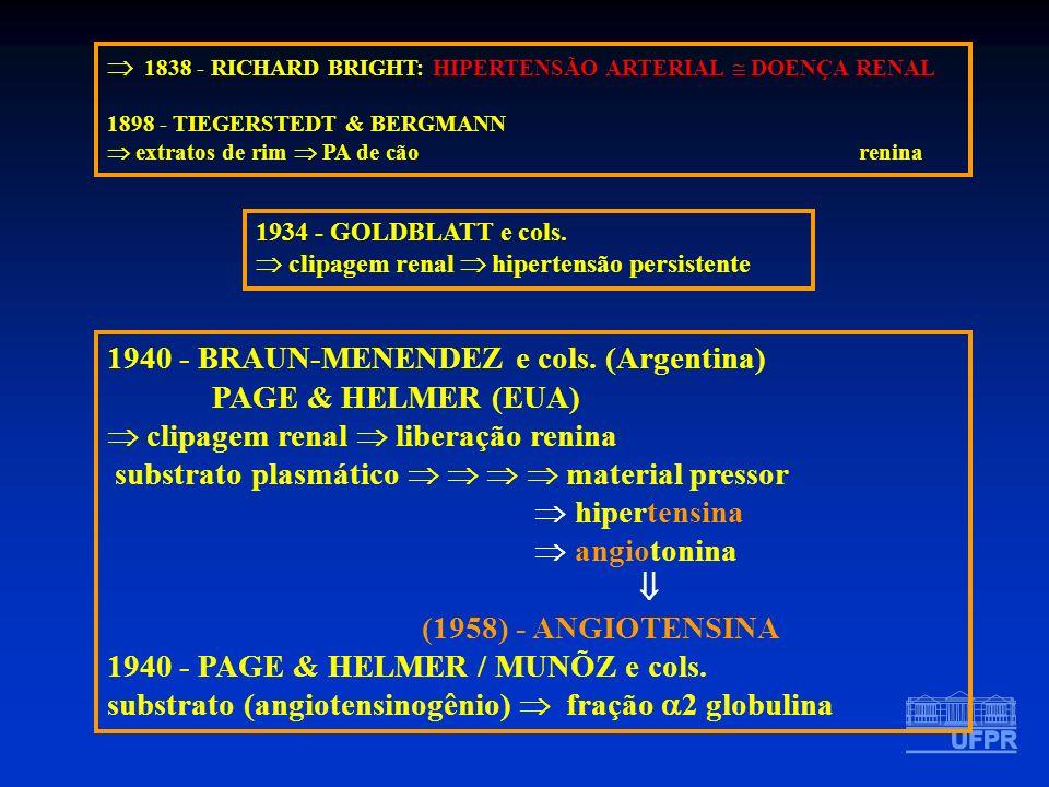 1838 - RICHARD BRIGHT: HIPERTENSÃO ARTERIAL DOENÇA RENAL 1898 - TIEGERSTEDT & BERGMANN extratos de rim PA de cão renina 1934 - GOLDBLATT e cols. clipa