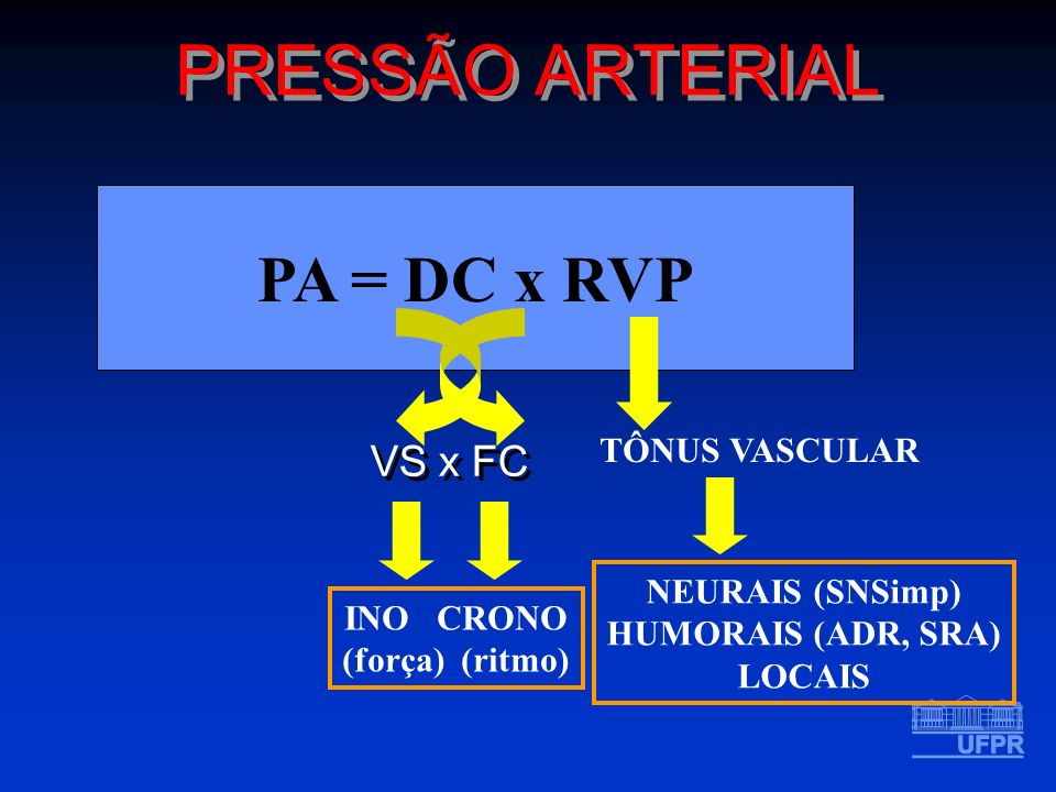 PA = DC x RVP VS x FC PRESSÃO ARTERIAL TÔNUS VASCULAR INO CRONO (força) (ritmo) NEURAIS (SNSimp) HUMORAIS (ADR, SRA) LOCAIS