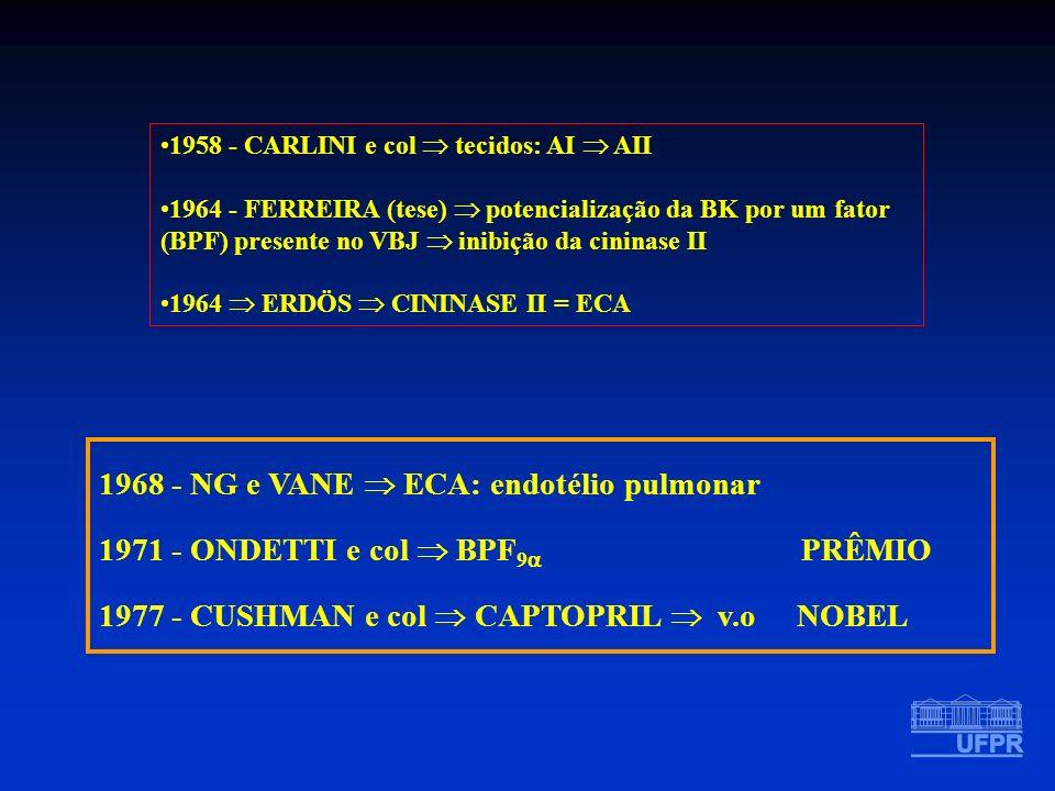 1958 - CARLINI e col tecidos: AI AII 1964 - FERREIRA (tese) potencialização da BK por um fator (BPF) presente no VBJ inibição da cininase II 1964 ERDÖ
