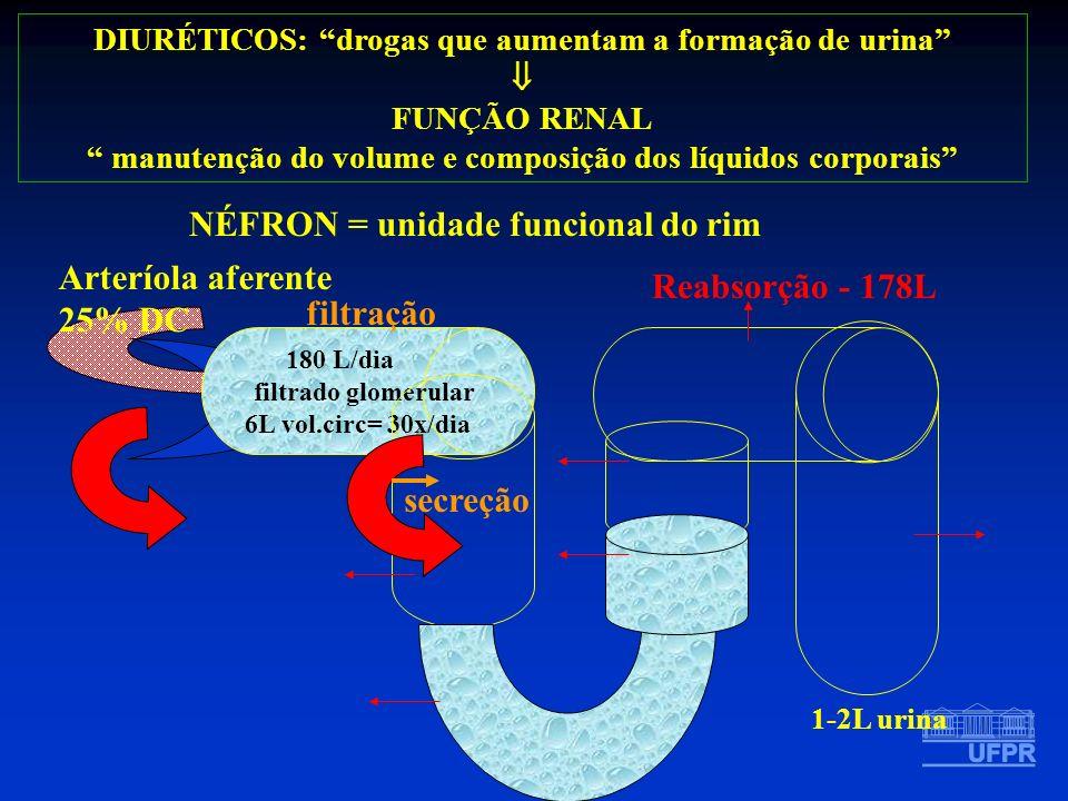 DIURÉTICOS: drogas que aumentam a formação de urina FUNÇÃO RENAL manutenção do volume e composição dos líquidos corporais Arteríola aferente 25% DC 18