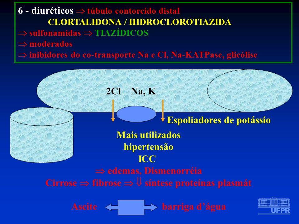 6 - diuréticos túbulo contorcido distal CLORTALIDONA / HIDROCLOROTIAZIDA sulfonamidas TIAZÍDICOS moderados inibidores do co-transporte Na e Cl, Na-KAT