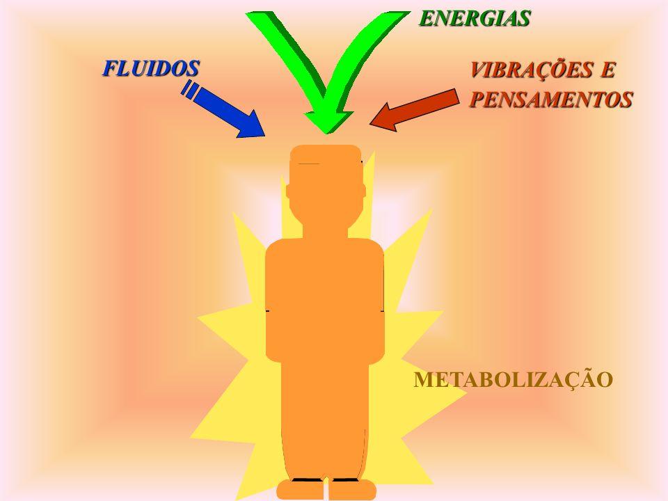 METABOLIZAÇÃO FLUIDOSENERGIAS VIBRAÇÕES E PENSAMENTOS