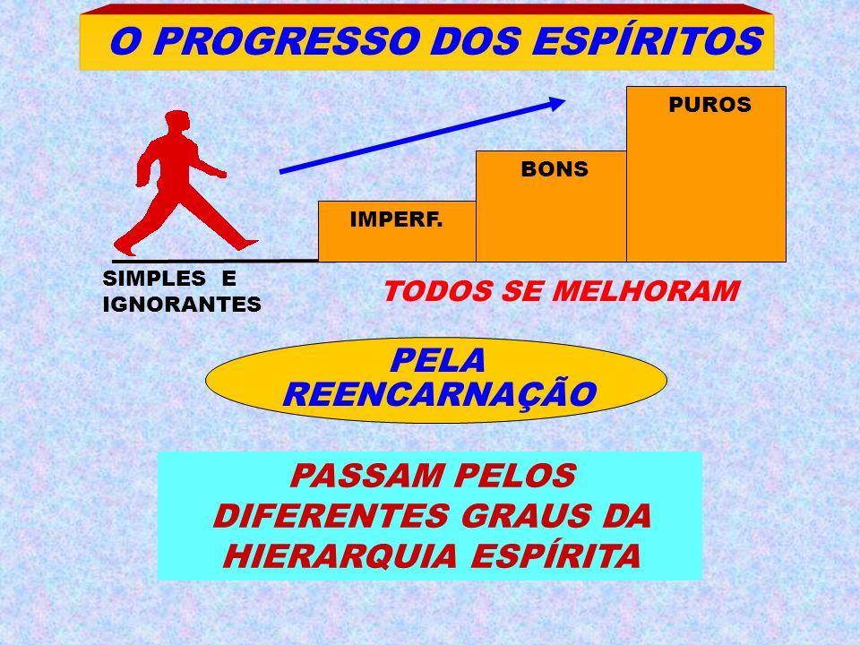 SIMPLES E IGNORANTES O PROGRESSO DOS ESPÍRITOS TODOS SE MELHORAM PELA REENCARNAÇÃO PASSAM PELOS DIFERENTES GRAUS DA HIERARQUIA ESPÍRITA IMPERF. BONS P