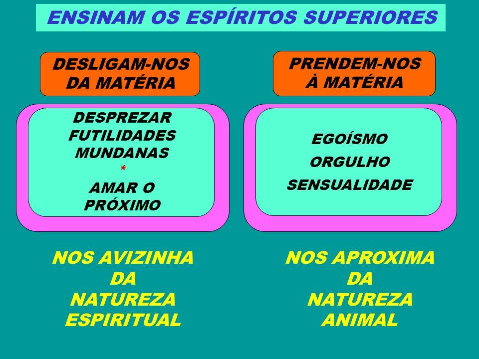ENSINAM OS ESPÍRITOS SUPERIORES DESLIGAM-NOS DA MATÉRIA PRENDEM-NOS À MATÉRIA DESPREZAR FUTILIDADES MUNDANAS * AMAR O PRÓXIMO EGOÍSMO ORGULHO SENSUALI