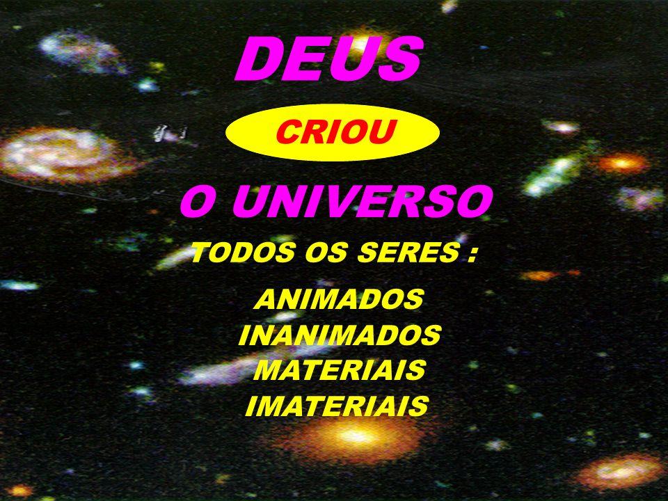 DEUS CRIOU O UNIVERSO TODOS OS SERES : ANIMADOS INANIMADOS MATERIAIS IMATERIAIS