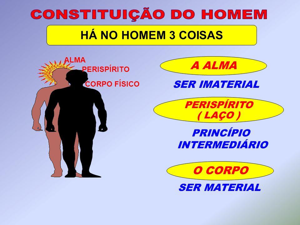 O CORPO ALMA PERISPÍRITO CORPO FÍSICO SER IMATERIAL SER MATERIAL PERISPÍRITO ( LAÇO ) PRINCÍPIO INTERMEDIÁRIO A ALMA HÁ NO HOMEM 3 COISAS