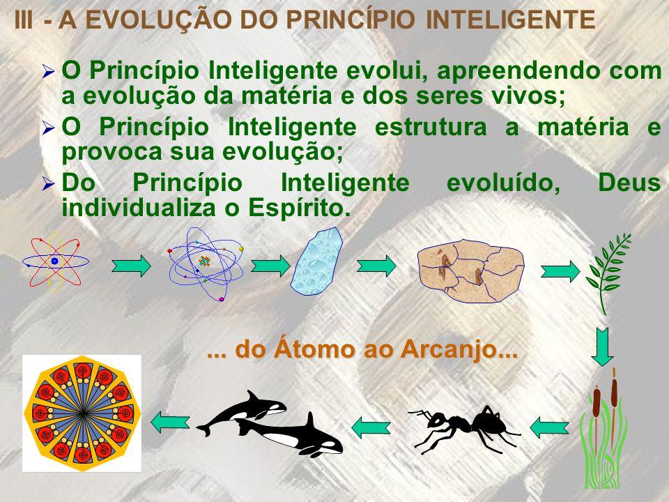 III - A EVOLUÇÃO DO PRINCÍPIO INTELIGENTE O Princípio Inteligente evolui, apreendendo com a evolução da matéria e dos seres vivos; O Princípio Intelig