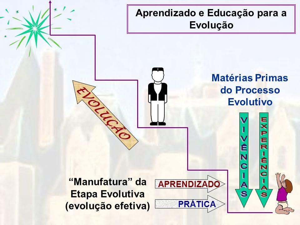 APRENDIZADOPRÁTICA Matérias Primas do Processo Evolutivo Manufatura da Etapa Evolutiva (evolução efetiva) EVOLUÇÃO Aprendizado e Educação para a Evolu