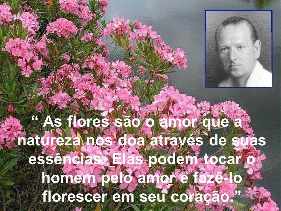 As flores são o amor que a natureza nos doa através de suas essências. Elas podem tocar o homem pelo amor e fazê-lo florescer em seu coração.