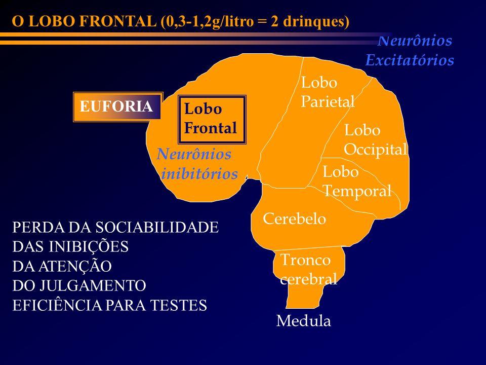 Lobo Frontal Cerebelo Lobo Parietal Lobo Occipital Lobo Temporal Neurônios inibitórios Neurônios Excitatórios O LOBO FRONTAL (0,3-1,2g/litro = 2 drinq