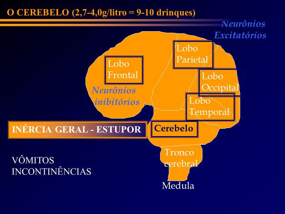 Lobo Frontal Cerebelo Lobo Parietal Lobo Occipital Medula Tronco cerebral Lobo Temporal Neurônios inibitórios Neurônios Excitatórios O CEREBELO (2,7-4