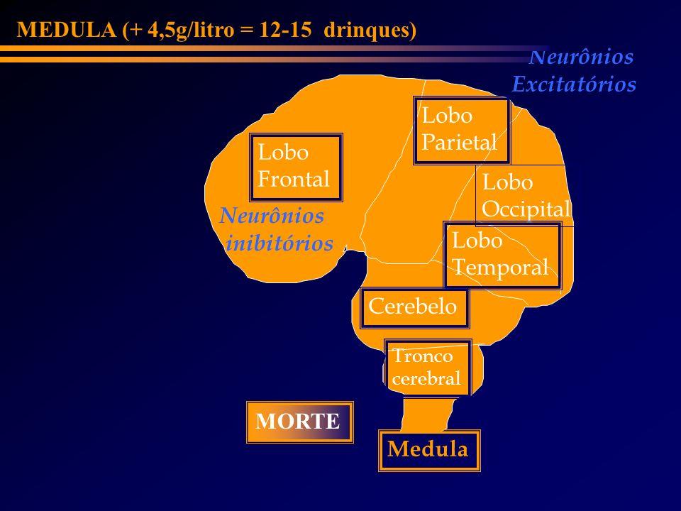 Lobo Frontal Cerebelo Lobo Parietal Lobo Occipital Medula Tronco cerebral Lobo Temporal Neurônios inibitórios Neurônios Excitatórios MEDULA (+ 4,5g/li