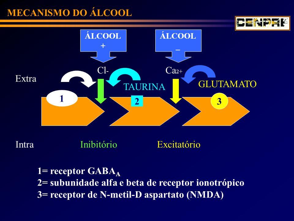 MECANISMO DO ÁLCOOL 1= receptor GABA A 2= subunidade alfa e beta de receptor ionotrópico 3= receptor de N-metil-D aspartato (NMDA) 1 Extra Intra Cl -