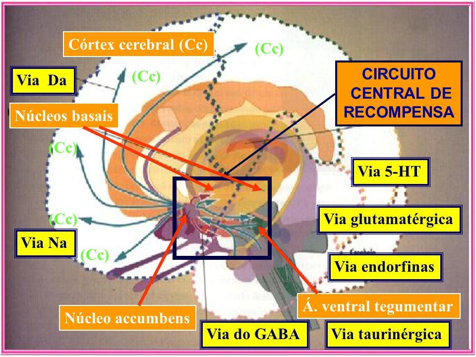 Núcleo accumbens Via do GABA Á. ventral tegumentar Núcleos basais Córtex cerebral (Cc) Via Da (Cc) CIRCUITO CENTRAL DE RECOMPENSA (Cc) Via 5-HT Via gl