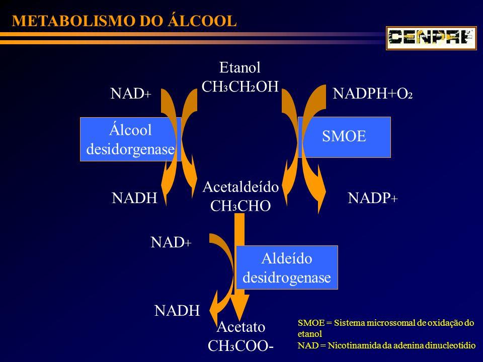 METABOLISMO DO ÁLCOOL Etanol CH 3 CH 2 OH Acetaldeído CH 3 CHO Álcool desidorgenase SMOE NAD + NADH NADPH+O 2 NADP + Aldeído desidrogenase NADH NAD +