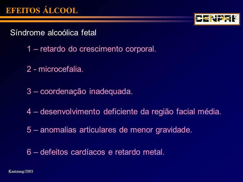 EFEITOS ÁLCOOL Síndrome alcoólica fetal 1 – retardo do crescimento corporal. 2 - microcefalia. 3 – coordenação inadequada. Kastzung/2003 4 – desenvolv