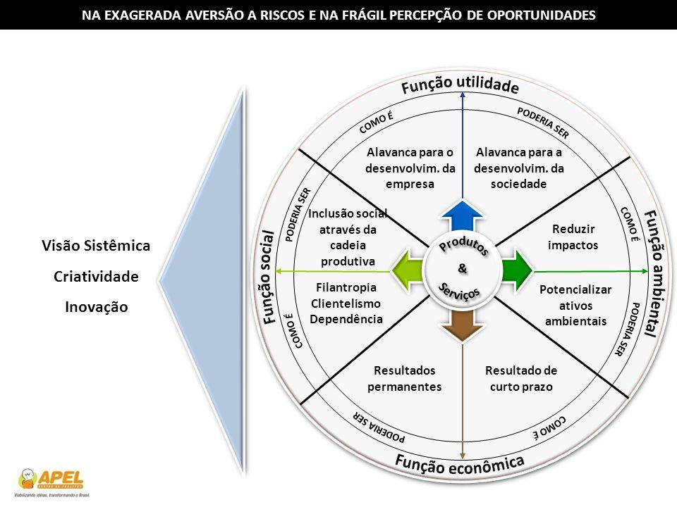 NA EXAGERADA AVERSÃO A RISCOS E NA FRÁGIL PERCEPÇÃO DE OPORTUNIDADES Alavanca para o desenvolvim. da empresa Alavanca para a desenvolvim. da sociedade