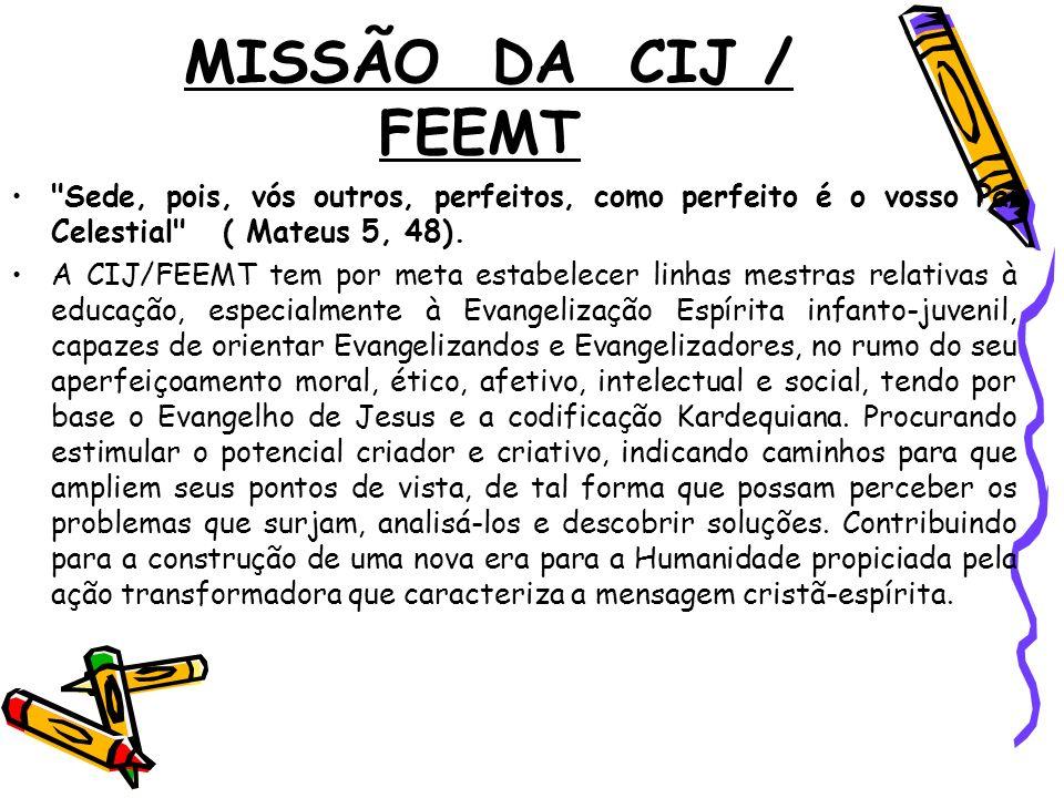 MISSÃO DA CIJ / FEEMT
