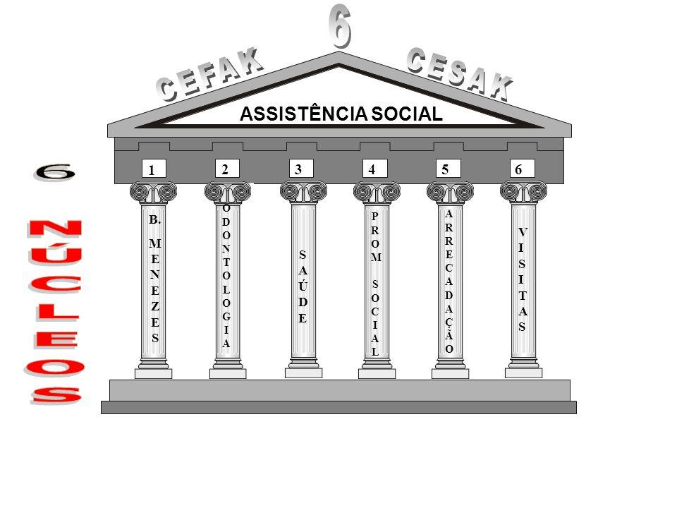 ASSISTÊNCIA SOCIAL PROM SOCIALPROM SOCIAL SAÚDESAÚDE ODONTOLOGIAODONTOLOGIA B. M E N E Z E S ARRECADAÇÃOARRECADAÇÃO VISITASVISITAS 1 23456