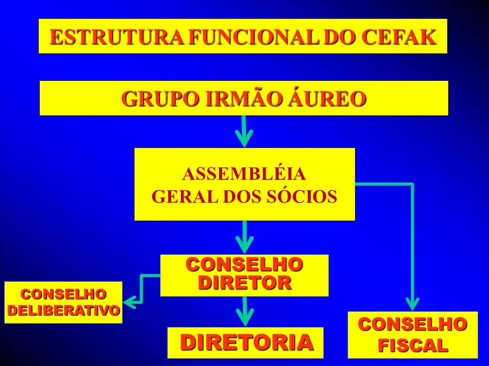 ASSEMBLÉIA GERAL DOS SÓCIOS CONSELHO DIRETOR DIRETORIA DIRETORIA CONSELHOFISCAL CONSELHODELIBERATIVO ESTRUTURA FUNCIONAL DO CEFAK GRUPO IRMÃO ÁUREO