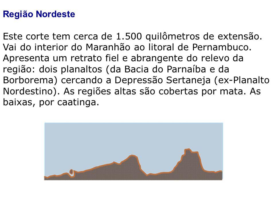 Região Nordeste Este corte tem cerca de 1.500 quilômetros de extensão. Vai do interior do Maranhão ao litoral de Pernambuco. Apresenta um retrato fiel