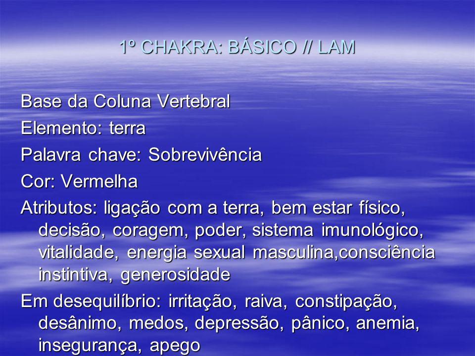 1º CHAKRA: BÁSICO // LAM Base da Coluna Vertebral Elemento: terra Palavra chave: Sobrevivência Cor: Vermelha Atributos: ligação com a terra, bem estar