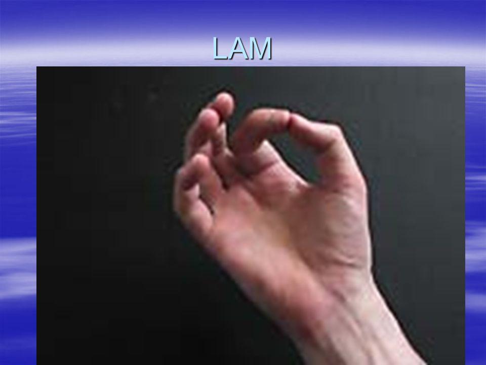 5º CHAKRA: LARÍNGEO // HAM Localização: garganta Elemento: éter Palavra Chave: Criatividade Cor: Azul Claro Atributos: comunicação, expressão, eloqüência, sensibilidade, metabolismo do corpo Em desequilíbrio: inibição das emoções, vertigens, alergias, problemas com tireóide, baixa expressão da criatividade, preconceitos, agressividade verbal