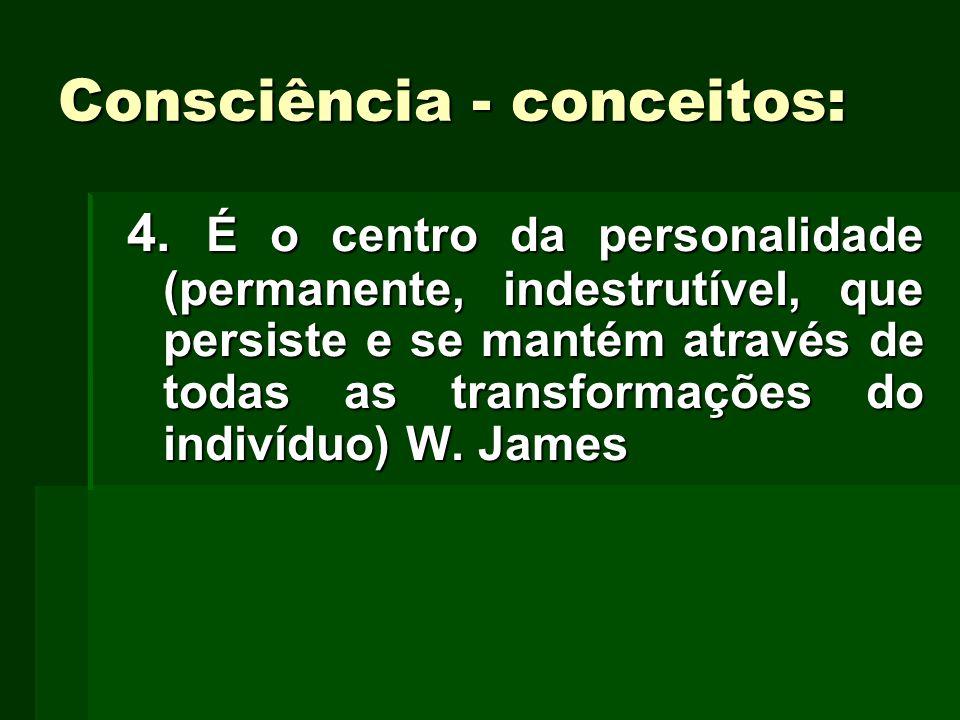 Consciência - conceitos: 4. É o centro da personalidade (permanente, indestrutível, que persiste e se mantém através de todas as transformações do ind