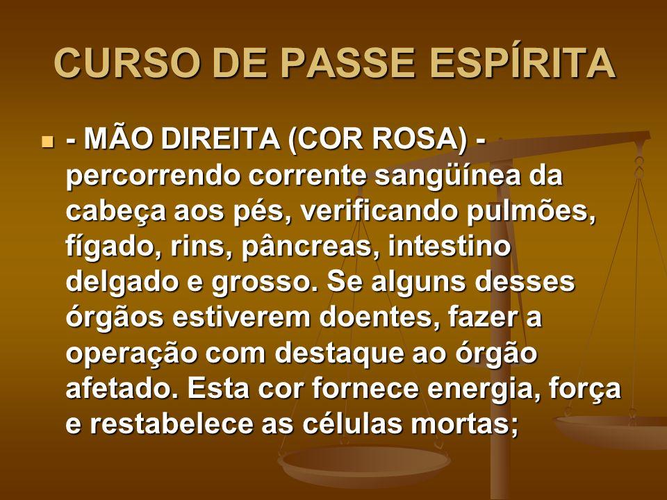CURSO DE PASSE ESPÍRITA - MÃO DIREITA (COR ROSA) - percorrendo corrente sangüínea da cabeça aos pés, verificando pulmões, fígado, rins, pâncreas, inte