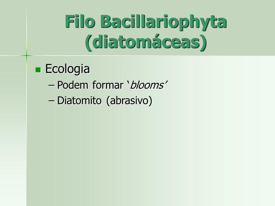 Ecologia Ecologia –Podem formar blooms –Diatomito (abrasivo) Filo Bacillariophyta (diatomáceas)