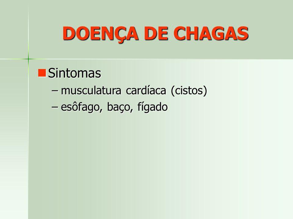 DOENÇA DE CHAGAS Sintomas Sintomas –musculatura cardíaca (cistos) –esôfago, baço, fígado