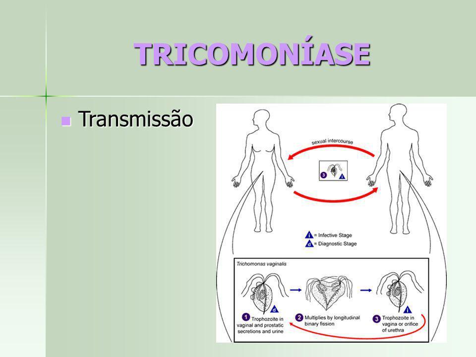 TRICOMONÍASE Transmissão Transmissão