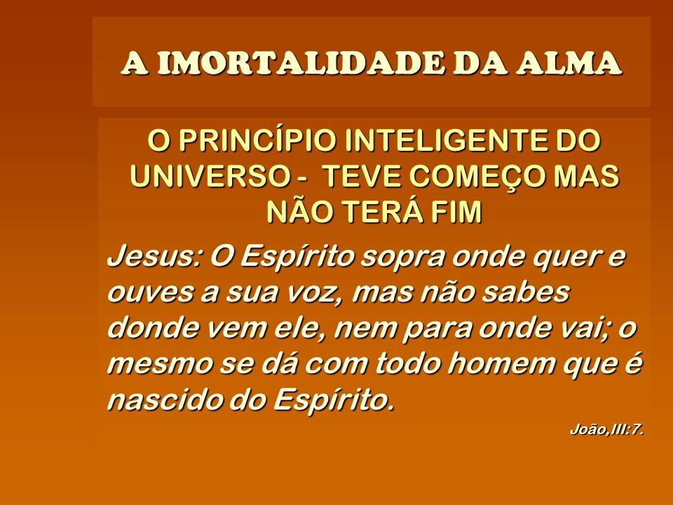 A IMORTALIDADE DA ALMA O PRINCÍPIO INTELIGENTE DO UNIVERSO - TEVE COMEÇO MAS NÃO TERÁ FIM Jesus: O Espírito sopra onde quer e ouves a sua voz, mas não