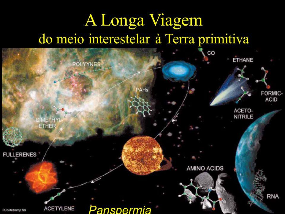 A Longa Viagem do meio interestelar à Terra primitiva P Panspermia