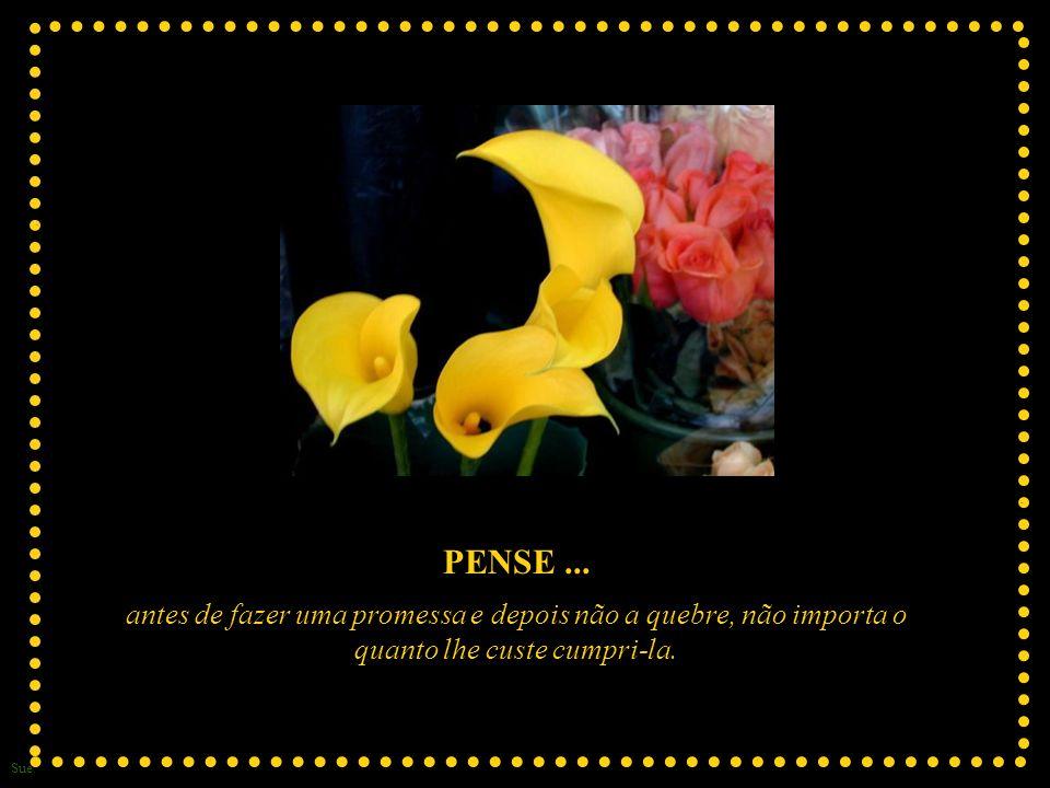 Sue PENSE...