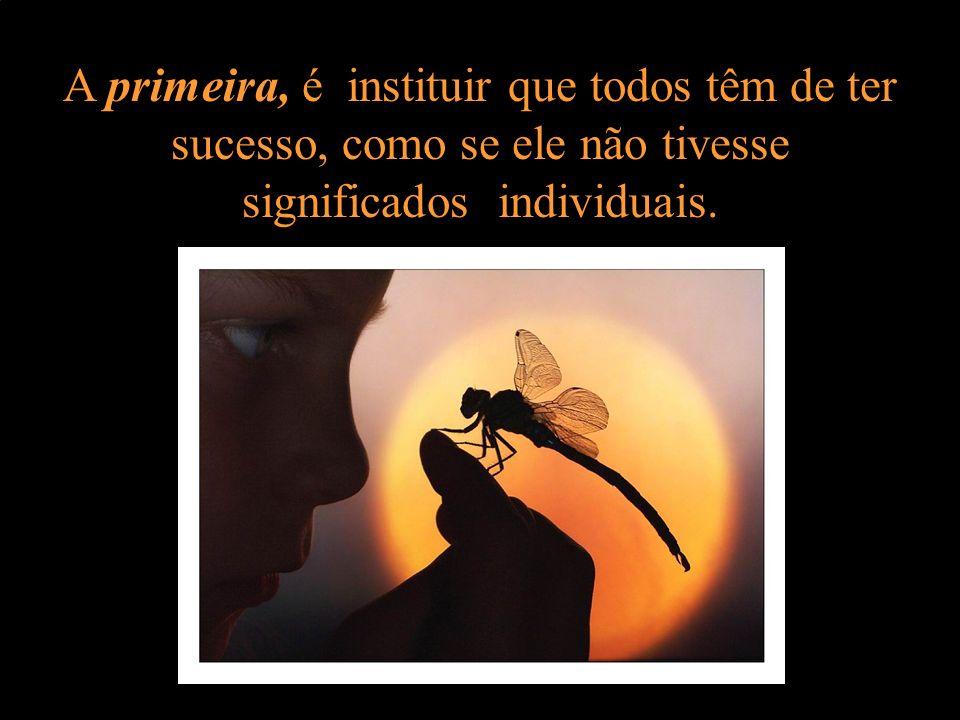 A primeira, é instituir que todos têm de ter sucesso, como se ele não tivesse significados individuais.