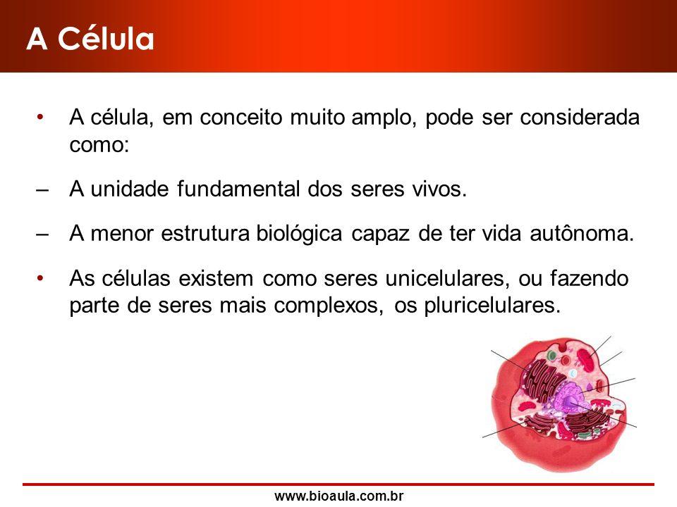 www.bioaula.com.br Membrana Plasmática Direitos autorais reservados. Proibida a venda ou distribuição sem autorização.