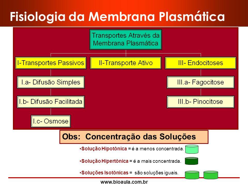 www.bioaula.com.br Operadores São mecanismos capazes de realizar transporte ativo, isto é, contra gradientes de concentração, elétrico, ou ambos. Os o