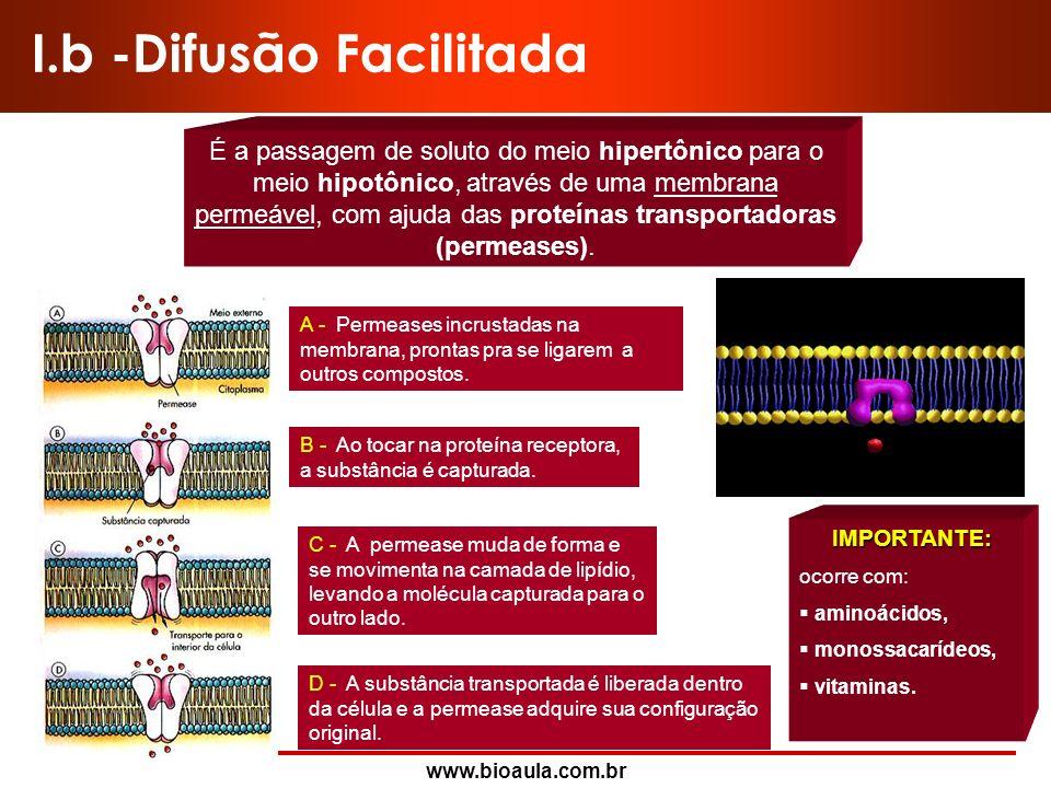 www.bioaula.com.br I.a -Difusão Simples É a passagem de soluto do meio hipertônico para o meio hipotônico através de uma membrana permeável. AB Antes