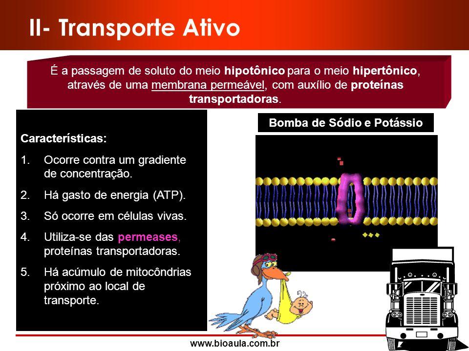 www.bioaula.com.br Pressão Osmótica SC = SI - M SC: força de sucção celular total SI: sucção interna do vacúolo M: força de resistência da parede celu