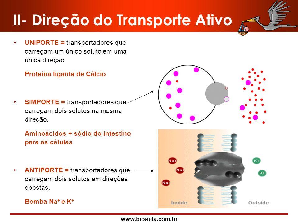 www.bioaula.com.br II- Transporte Ativo Bomba de Na + e K + Este tipo de transporte se dá, quando íons como o sódio (Na +) e o potássio (K + ), tem qu
