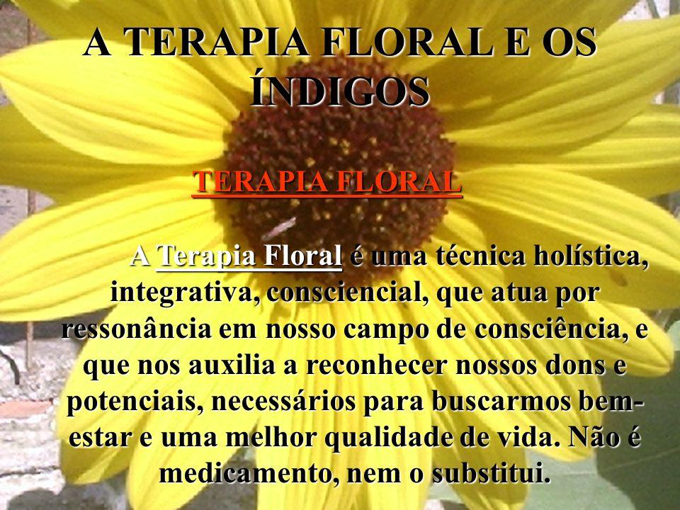A TERAPIA FLORAL E OS ÍNDIGOS TERAPIA FLORAL A Terapia Floral é uma técnica holística, integrativa, consciencial, que atua por ressonância em nosso ca