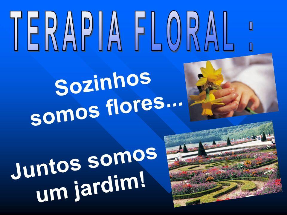 Sozinhos somos flores... Juntos somos um jardim!