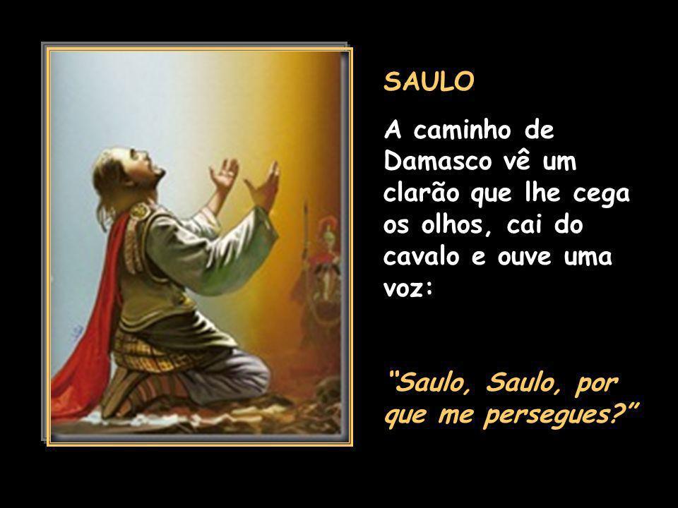 BATISMO DE JESUS POR JOÃO BATISTA Tu és aquele meu filho especialmente amado, em ti é que tenho posto toda minha complacência.