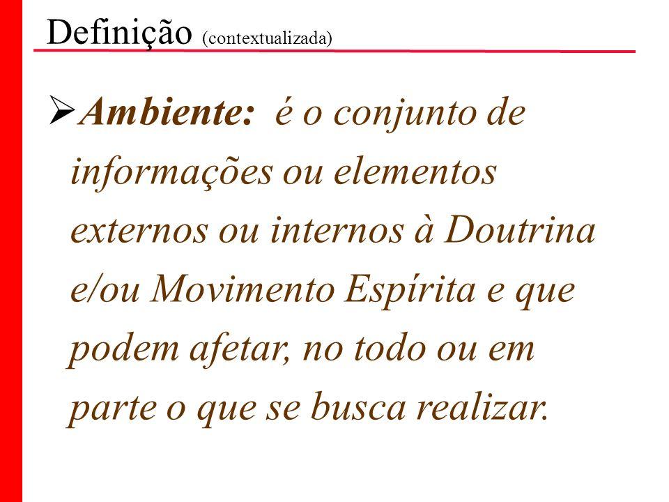 Definição (contextualizada) Ambiente: é o conjunto de informações ou elementos externos ou internos à Doutrina e/ou Movimento Espírita e que podem afe