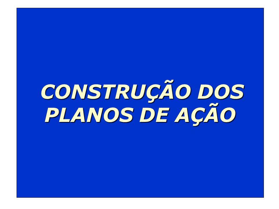 CONSTRUÇÃO DOS CONSTRUÇÃO DOS PLANOS DE AÇÃO